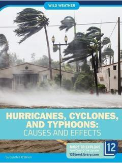 Hurricanes, Cyclones, and Typhoons: Causes and Effects