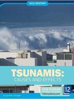 Tsunamis: Causes and Effects