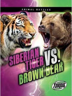 Siberian Tiger vs. Brown Bear
