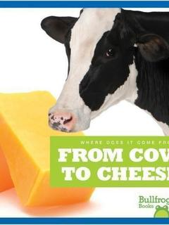 From Cow to Cheese