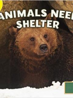 Animals Need Shelter