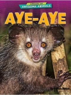 Aye-Aye
