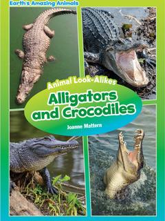 Animal Look-Alikes: Alligators and Crocodiles