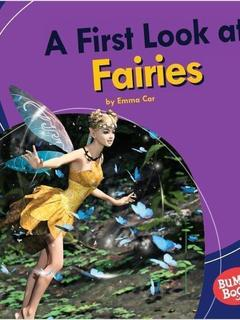 A First Look at Fairies