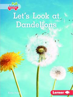 Let's Look at Dandelions