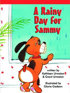 A Rainy Day For Sammy