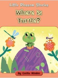 Where is Turtle?