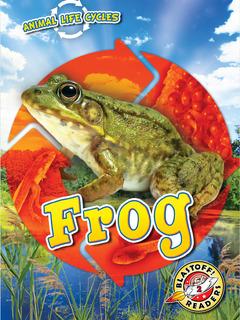 Animal Life Cycles: Frog