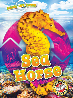 Animal Life Cycles: Sea Horse