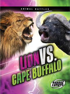 Lion vs. Cape Buffalo