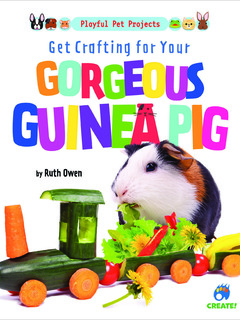 Get Crafting for Your Gorgeous Guinea Pig