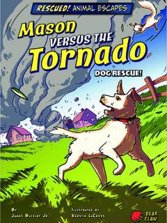 Mason versus the Tornado