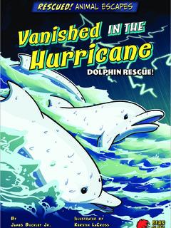 Vanished in the Hurricane