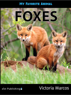My Favorite Animal: Foxes