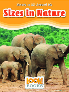Sizes in Nature