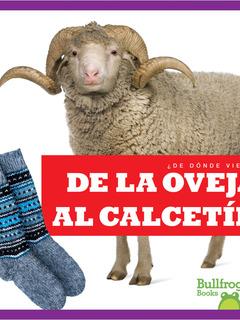 De la oveja al calcetín