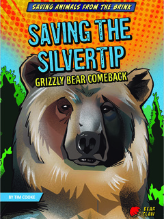Saving the Silvertip