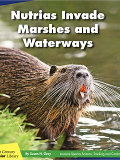 Nutrias Invade Marshes and Waterways