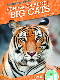 Fun Facts About Big Cats