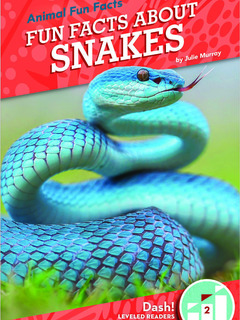 Fun Facts About Snakes