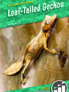 Leaf-Tailed Geckos