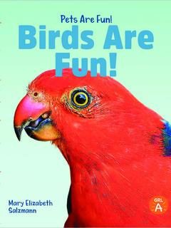 Birds Are Fun!
