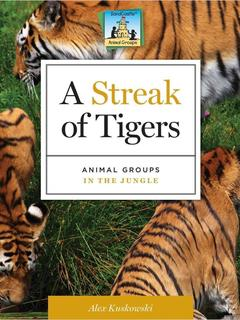 Streak of Tigers: Animal Groups in the Jungle