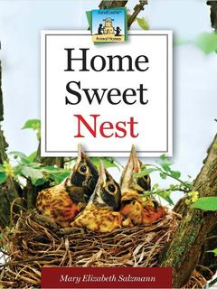 Home Sweet Nest