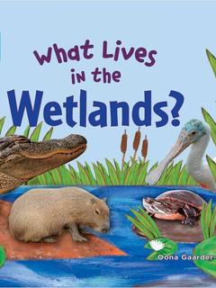 What Lives in the Wetlands?