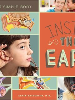 Inside the Ears