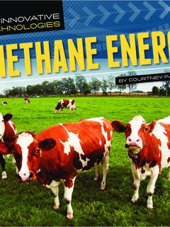 Methane Energy