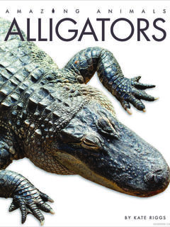Amazing Animals: Alligators