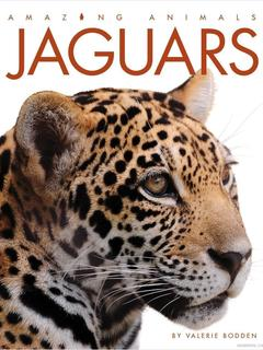 Amazing Animals: Jaguars