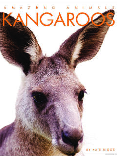 Amazing Animals: Kangaroos