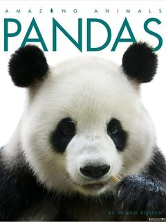 Amazing Animals: Pandas