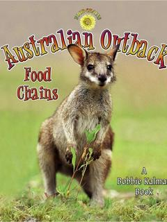Australian Outback Food Chains