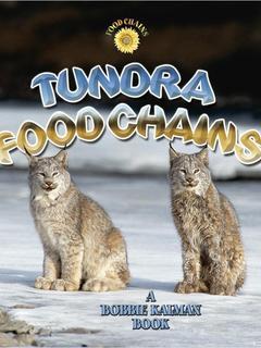 Tundra Food Chains
