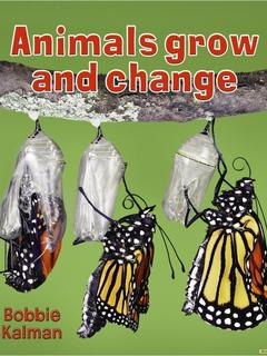Animals grow and change
