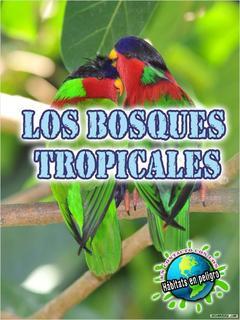 Los bosques tropicales