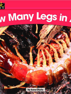 How Many Legs in All?