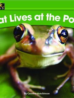 What Lives at the Pond?
