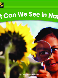 What Can We See in Nature?