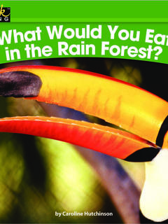 What Would You Eat in the Rain Forest?