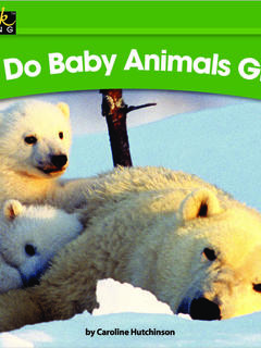 How Do Baby Animals Grow?