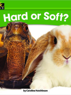 Hard or Soft?