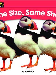 Same Size, Same Shape