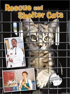 Rescue and Shelter Cats