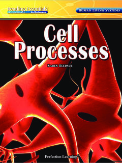 Cell Processes