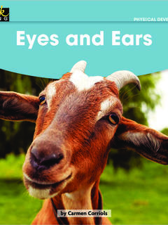 Eyes and Ears