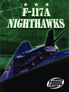 F-117A Nighthawks